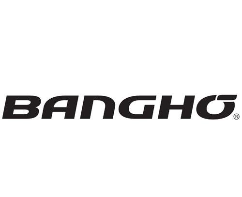 Banghó lanza su programa para socios para resellers – Punto a Punto Diario