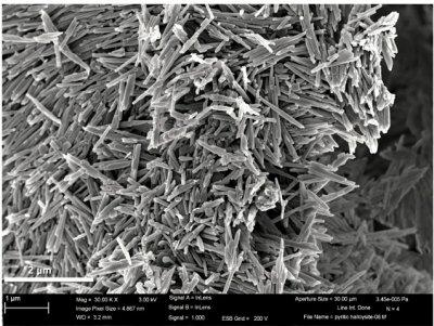 Closeup of Halloysite particles