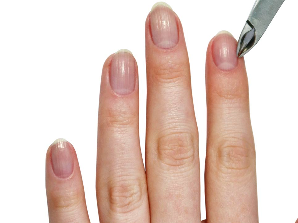 Galentines-Day-Velvet Touch Manicure Nipper