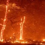 El mundo hacia un rumbo «catastrófico», con una temperatura media de +2,7 ºC, advierte ONU