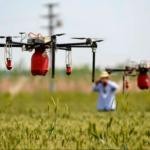 Así es cómo los drones evitarían una crisis alimentaria en Nicaragua por la plaga de langosta, pero su uso está prohibido
