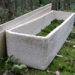 Un ataúd viviente para los muertos: féretro a base de hongos convierte cuerpos en abono