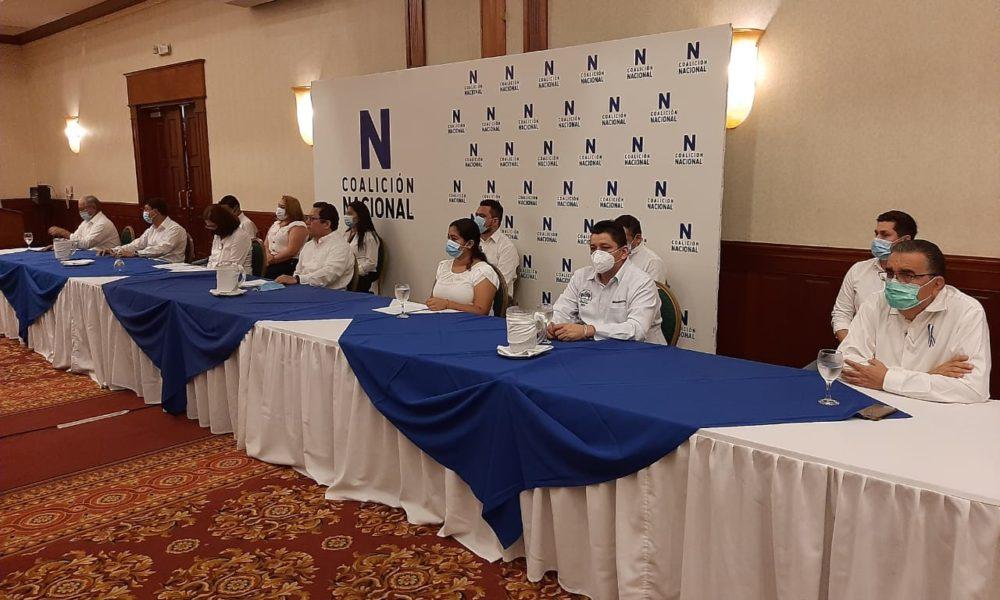 Coalición Nacional, Alianza Cívica, reformas electoral, Unidad Nacioanal Azul y Blanco, OEA