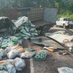 Muere camionero que trasladaba comida para mascotas