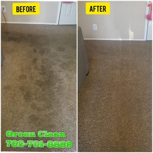 Green Clean Carpet Solutions