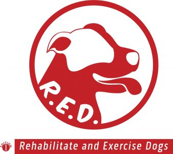R.E.D. Rehabilitate and Exercise Dogs
