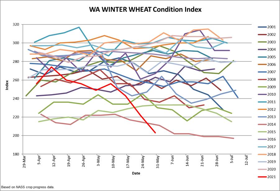 Washington Winter Wheat Condition index