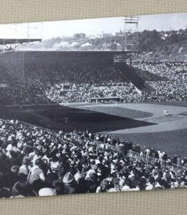 Seattle Sicks Stadium Postcard