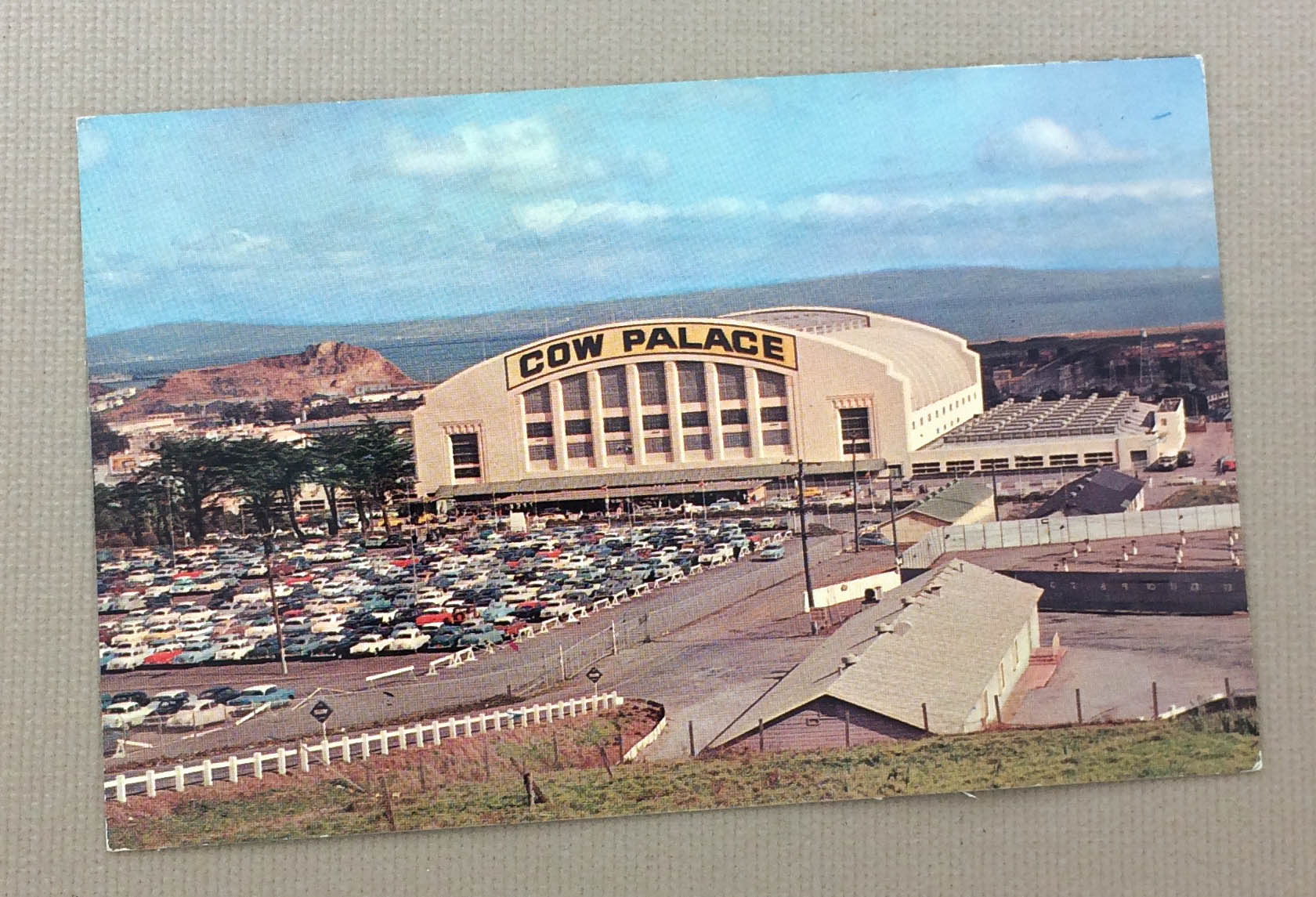 The Cow Palace