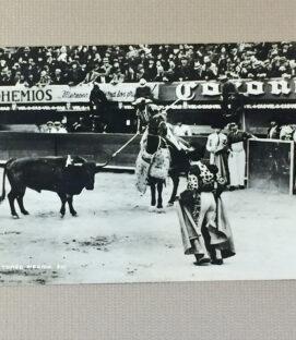 Bullring Mexico City Vintage Postcard