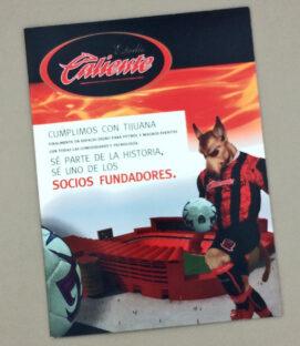 2008 Xolos Estadio Caliente Sales Brochure