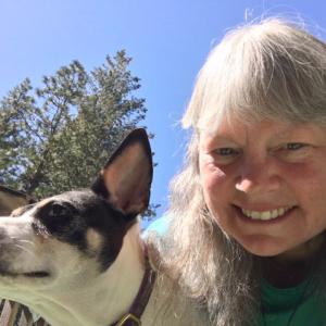 A Dog Mamma's Organic Dog Treats Customer