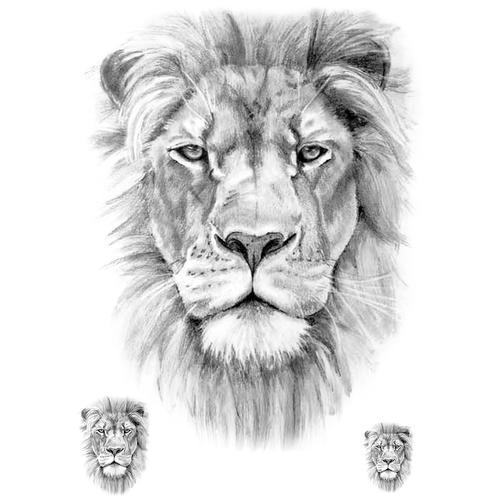 Realistic Lion - 3 pieces
