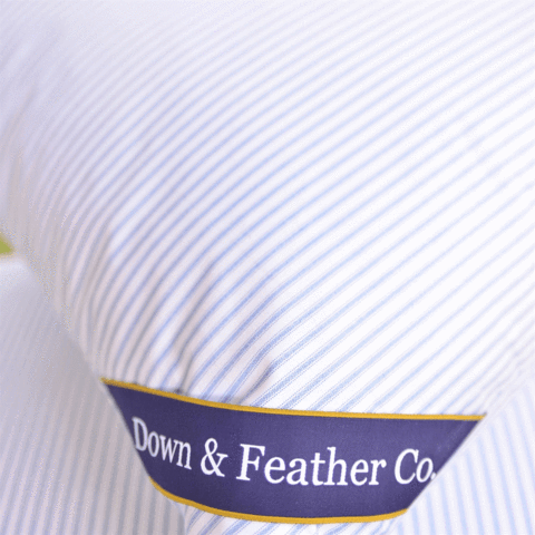 "D&FCo. Original Queen Feather Pillows - (20"" x 30"")"