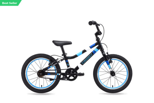 16 Inch Ethos Bike