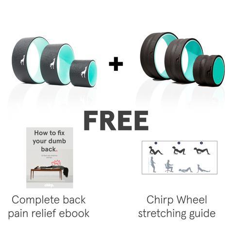 Complete Back Pain Relief Bundle