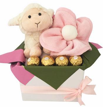 Baby Girl Basket - Mum and Bub Pippins Lamb Girl