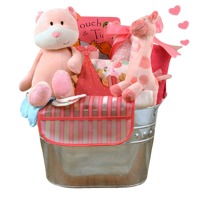 Welcome Home Newborn Gift Basket - Girl (#CBB1)