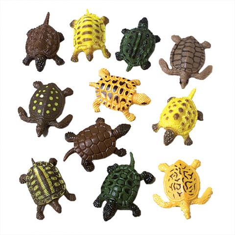 Mini Turtles (1 Dozen)
