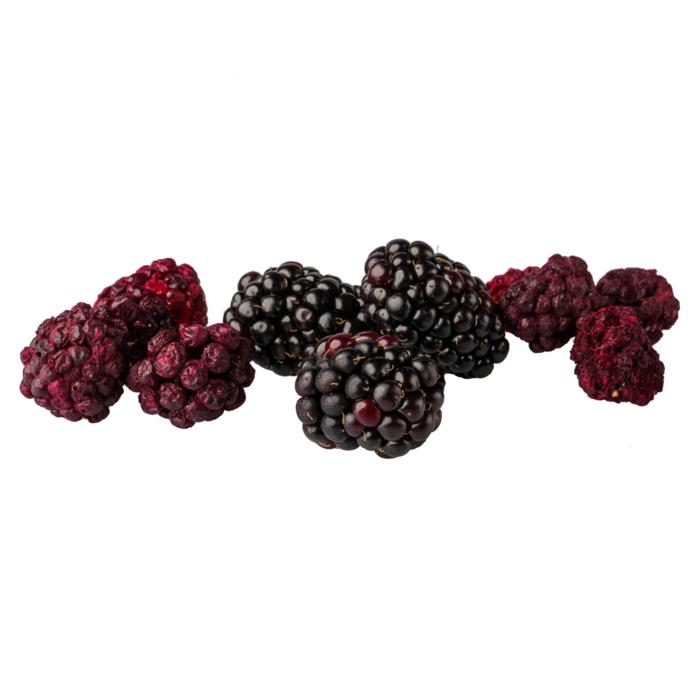 Freeze Dried Blackberry Snack Pouch