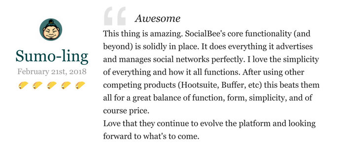 Lifetime Access to SocialBee