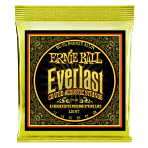 Everlast Coated 80/20 Bronze Cordes pour Guitare Folk