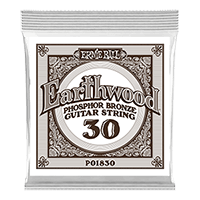.030 Earthwood Phosphor Bronze Acoustic Guitar String Thumb