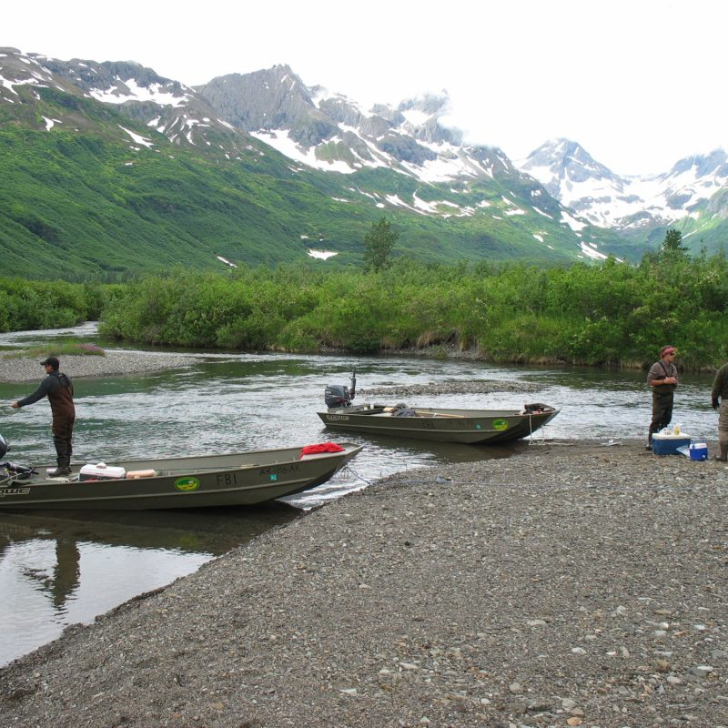 Alaska 2008 080