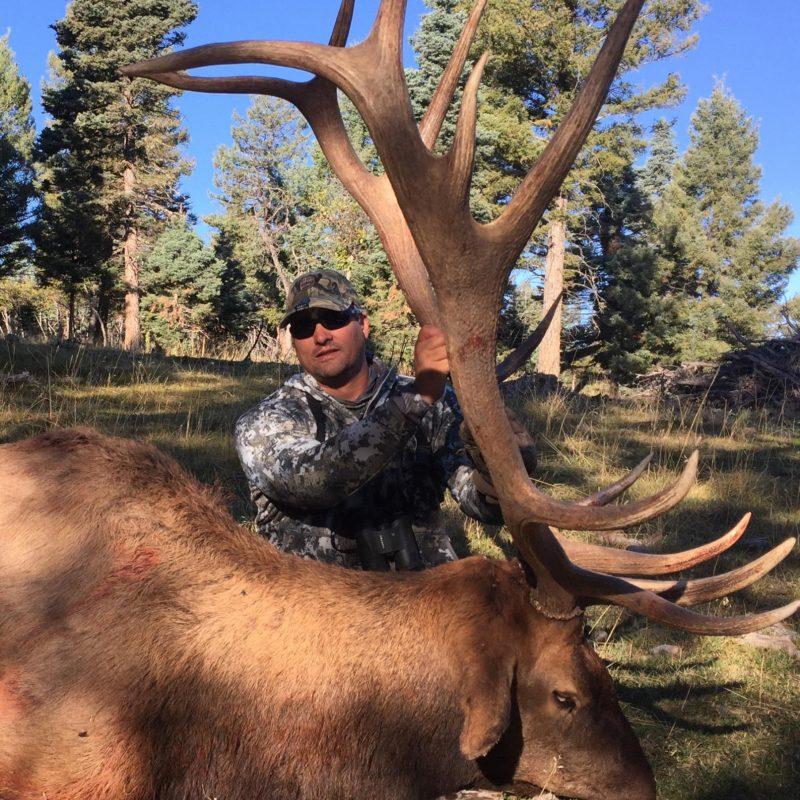 Alfred Devall Elk