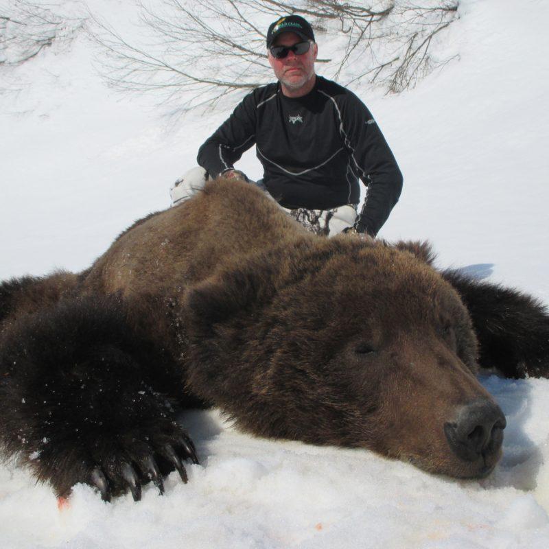Bob Bear 1