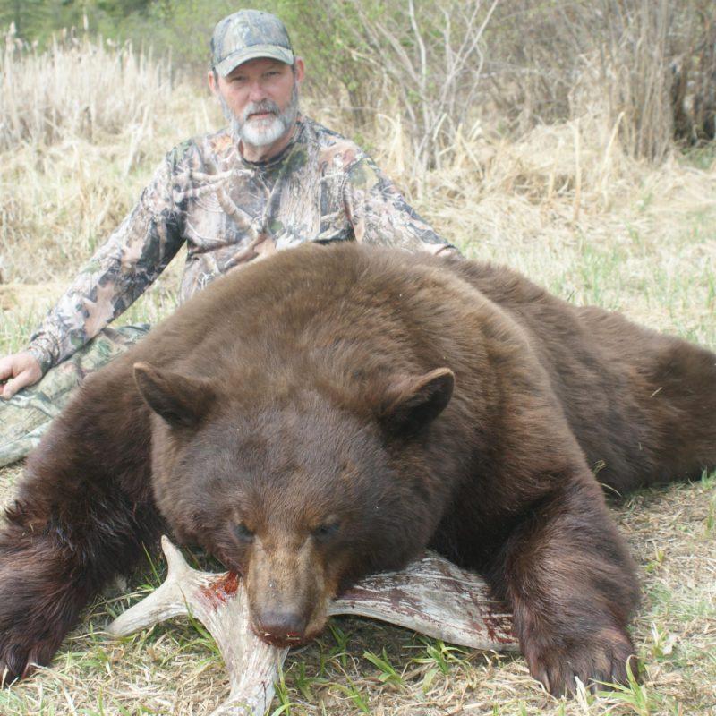 Duane Reimers Pierceland Bear