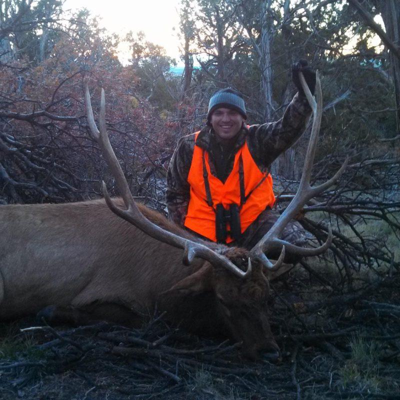 Durango Elk 3