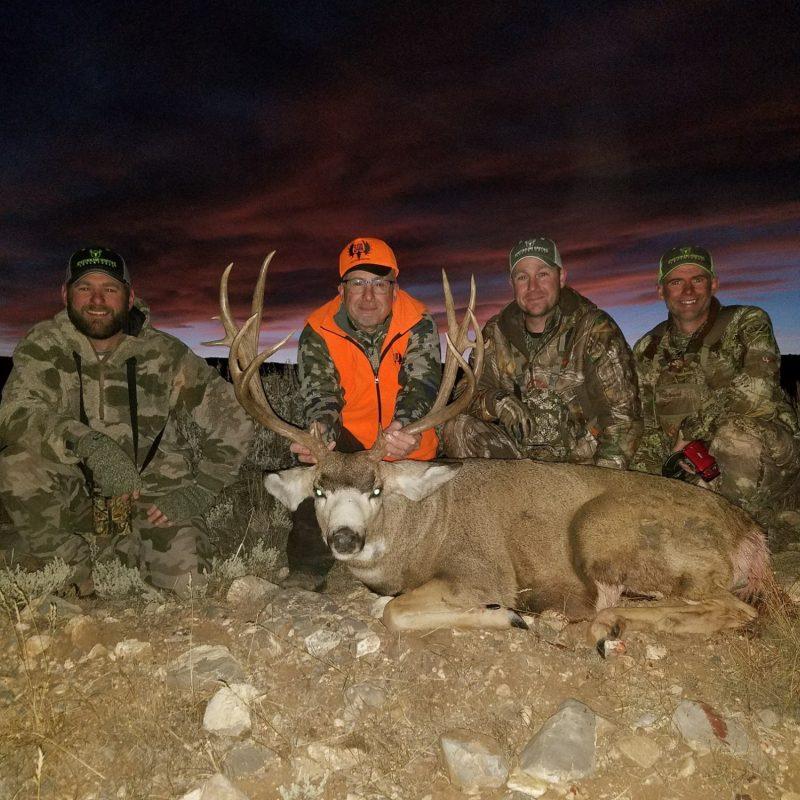 Gary La Haie Mule Deer