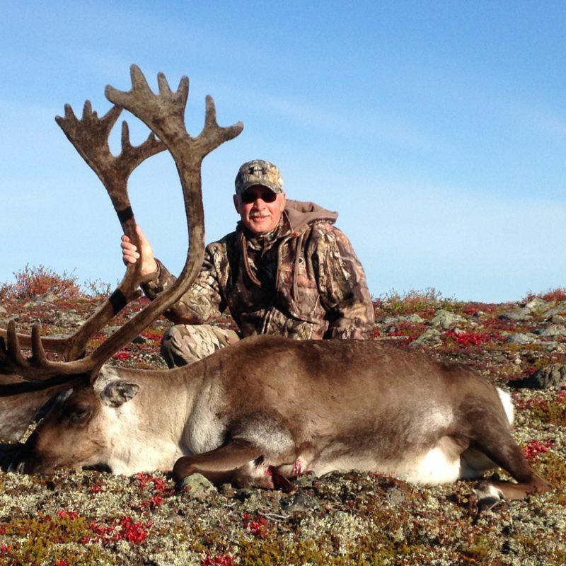 Glen Axness Caribou 3