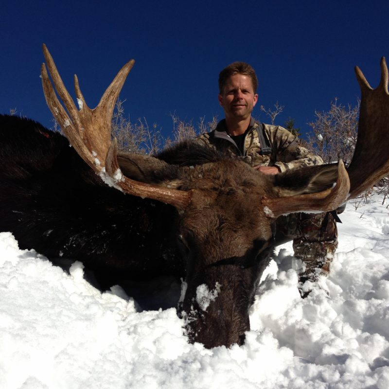 Greg Williamson Moose