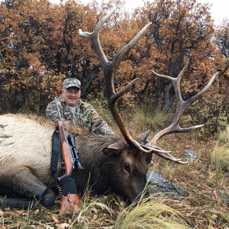 Jack Stewart Elk JPG