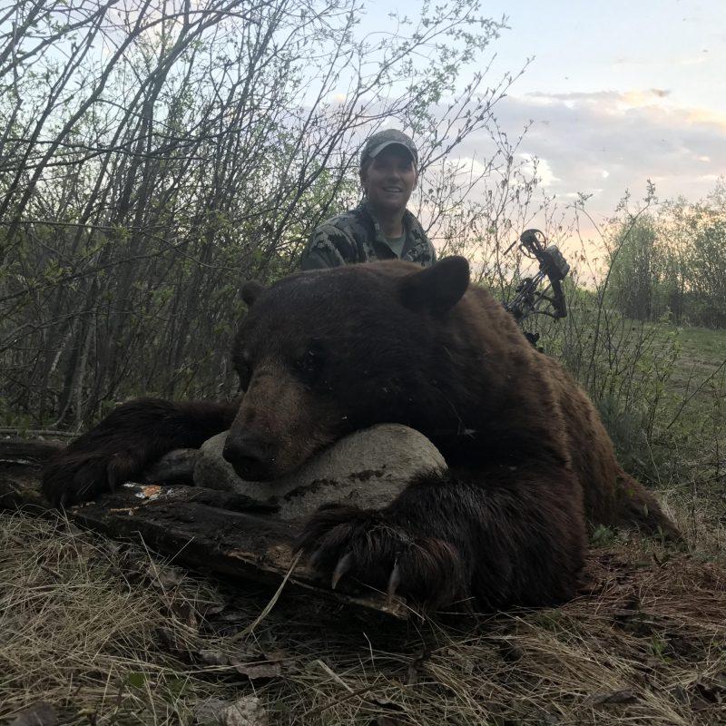 Mason Bear 2