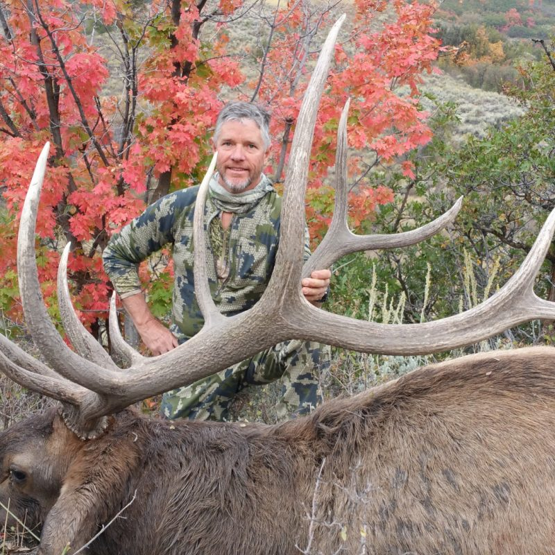 Matt Goff Elk