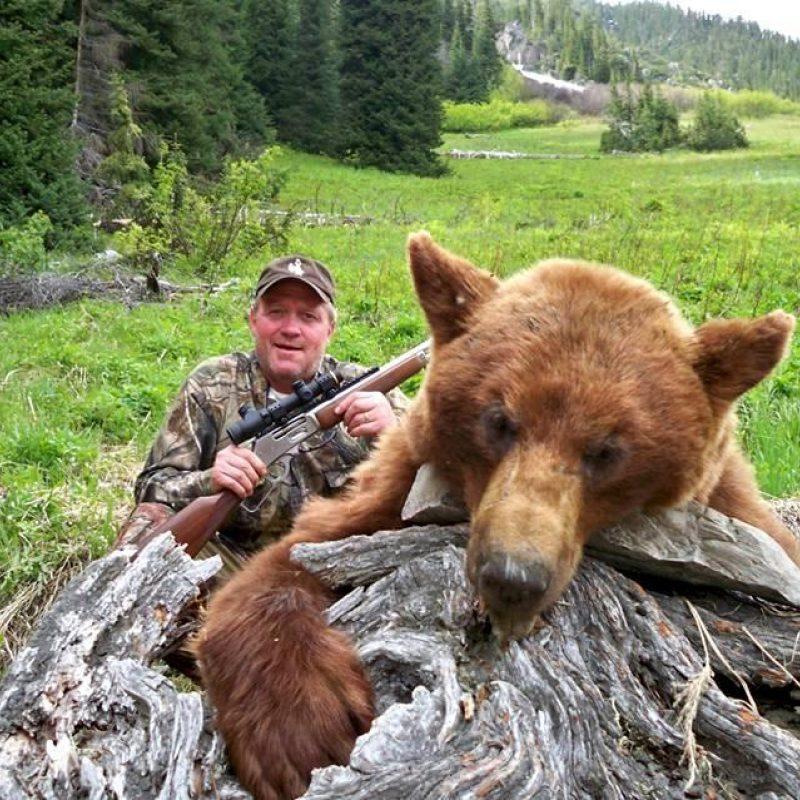 Petes bear