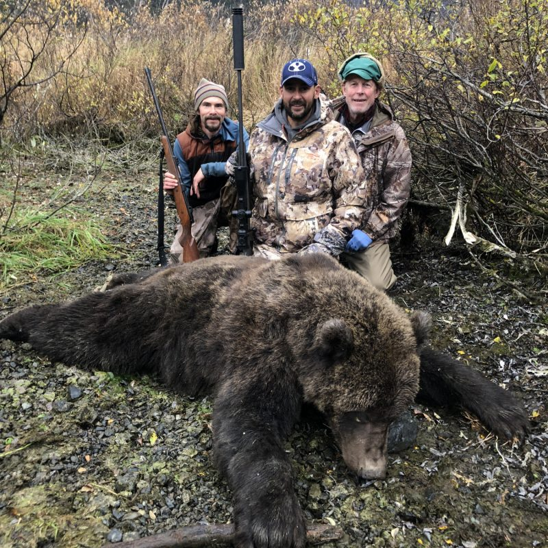 Shawn Holste Brown Bear