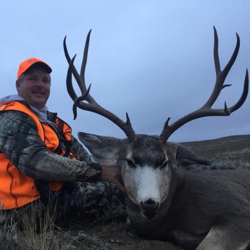 Steve Gump Mule Deer 1
