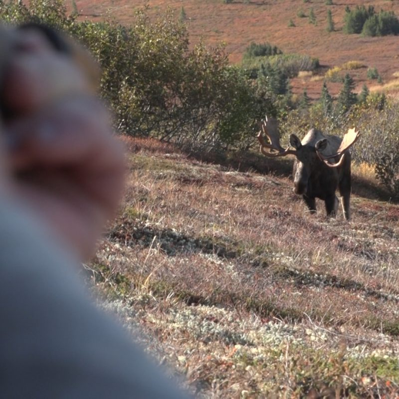Steve and Moose