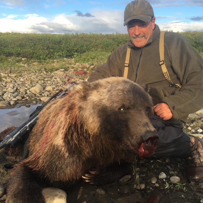Tom Mangold Grizzly