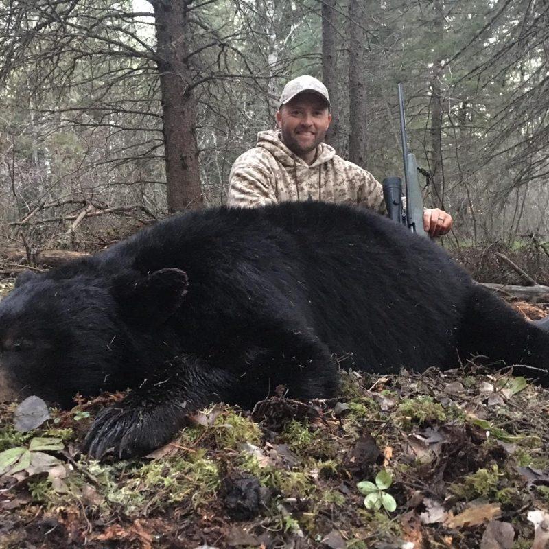 Travis Price Bear