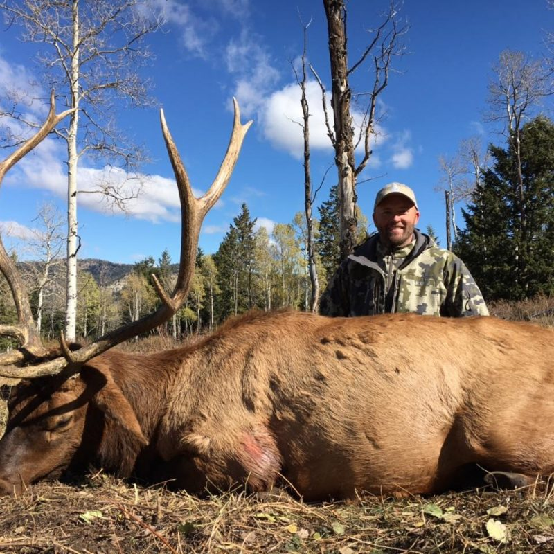 Travis Price Elk