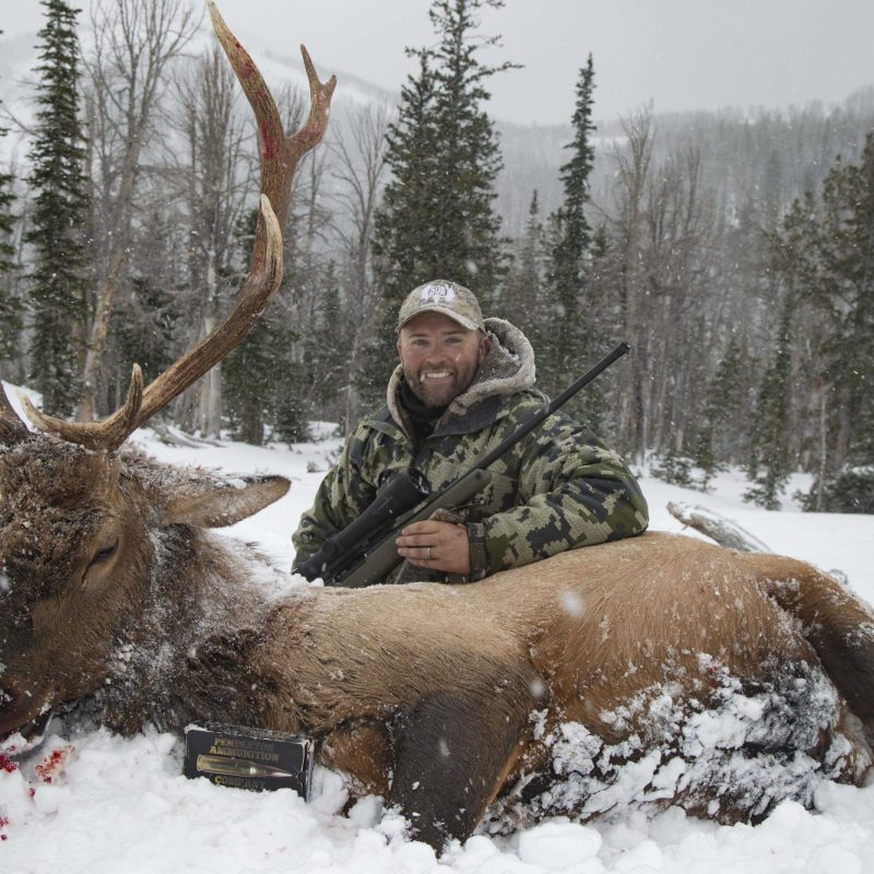 Travis Price Elk