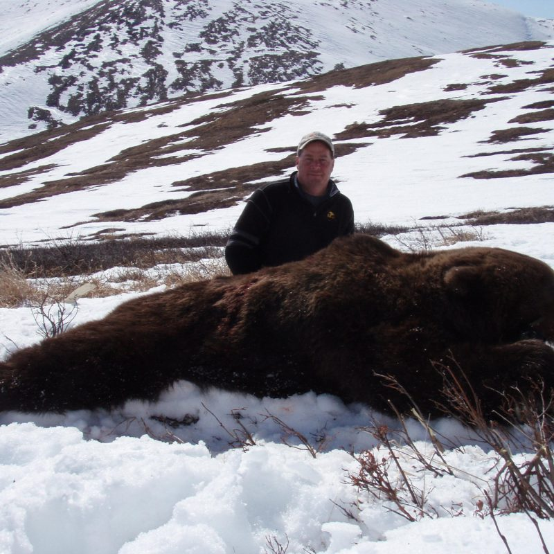 Alaska grizzy bear hunt 262