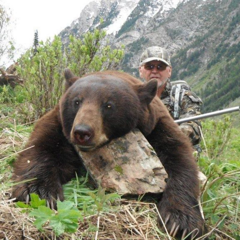 Hunting pictures 572