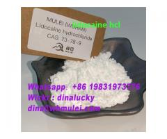 Top lidocaine hcl powder supplier 73-78-9 with lower price