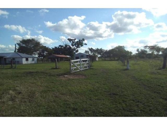 For sale stay in paraguay - 300 hectares